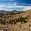 View from the boundary between Stanislaus National Forest and Humboldt-Toiyabe National Forest