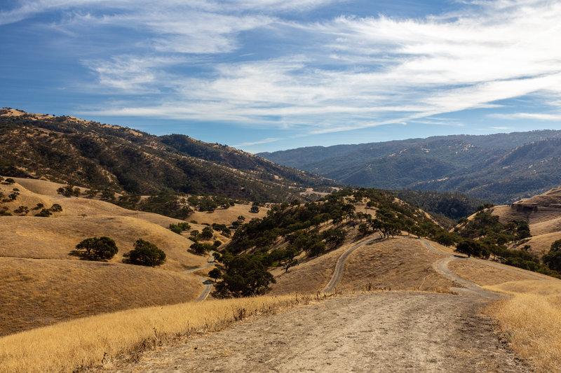 Looking west from the Cedar Creek Trail