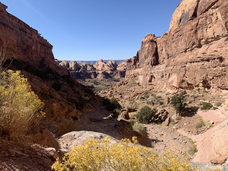 The Pritchett Canyon portion of the trail... a few jeeps in the beginning but then not a soul for miles and miles.