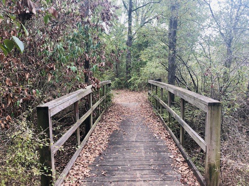 Bridge on Buzzard Point Loop Trail