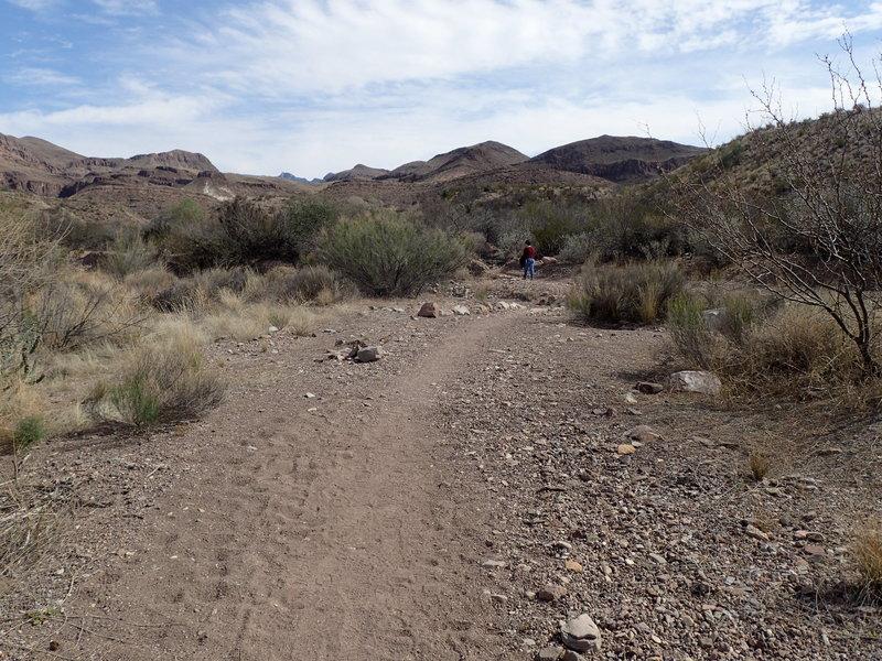 Mules Ears Trail