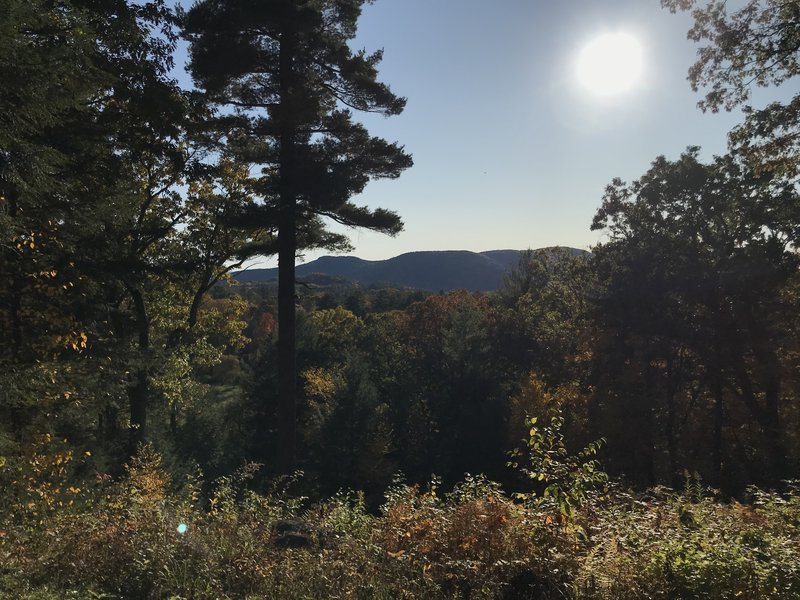 The view from Laurel Hill.