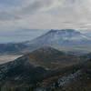 A flotilla of logs on Spirit Lake, Harry's Ridge, and Mount Saint Helens