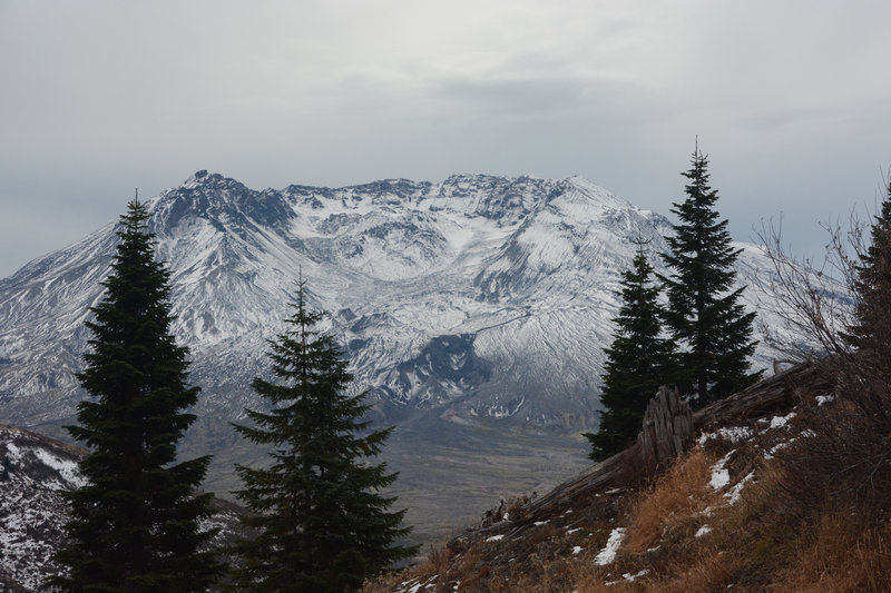 Mount Saint Helens from partway up Coldwater Peak