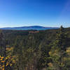 View of Cadillac Mountain from Anvil Overlook.