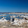 Salt rock formations on the western shore of Mono Lake.