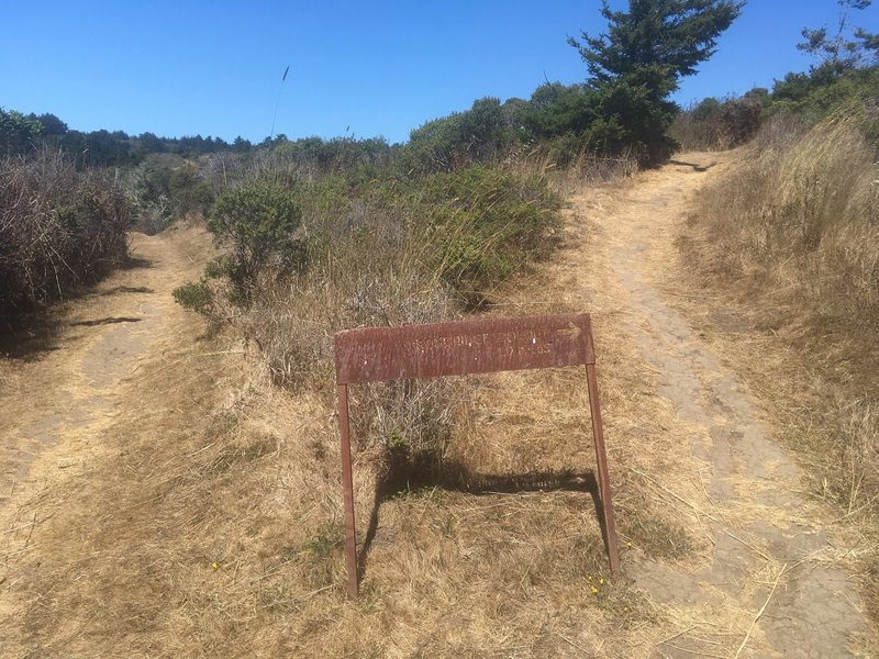 Ohlone Ridge Lookout Loop