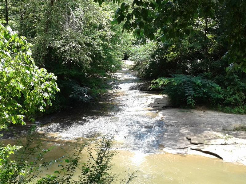Small creek running into the main creek.