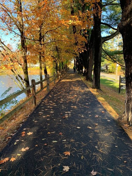 Paved path as it parallels Pleasantville Road