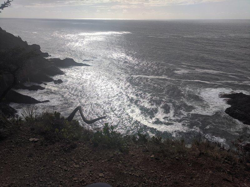 Overlook of Cape Falcon