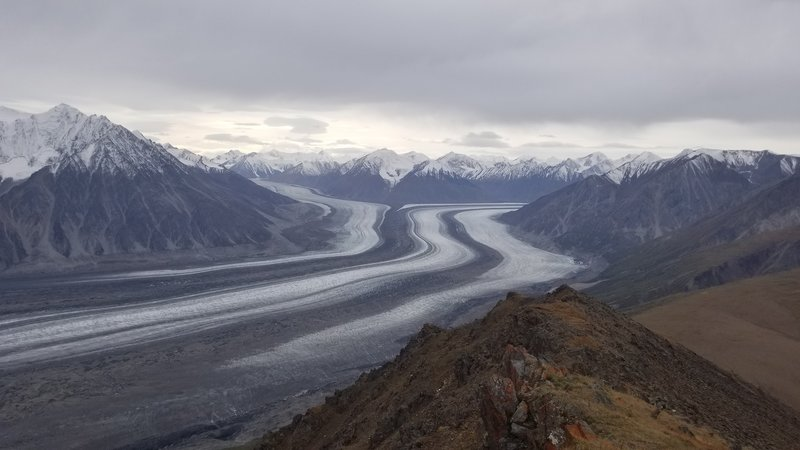 View of Kaskawulsh Glacier from the summit of Observation Mountain.