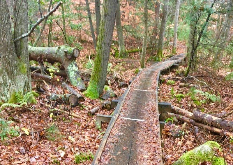 Cool wooden bridge