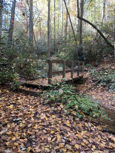 Bridge Jacob branch trail