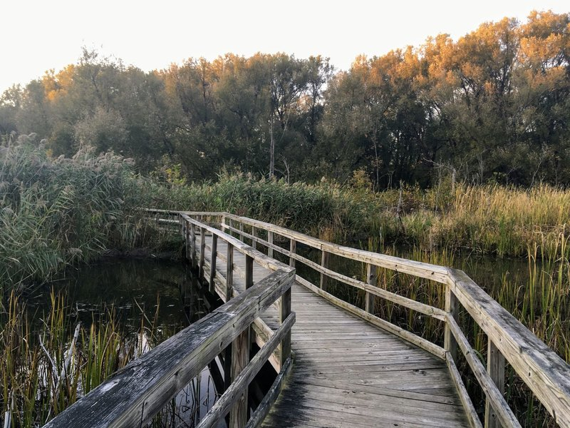 The nature boardwalks are well kept and fun to walk on