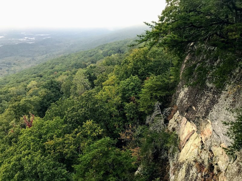 A foggy lookout along the trail
