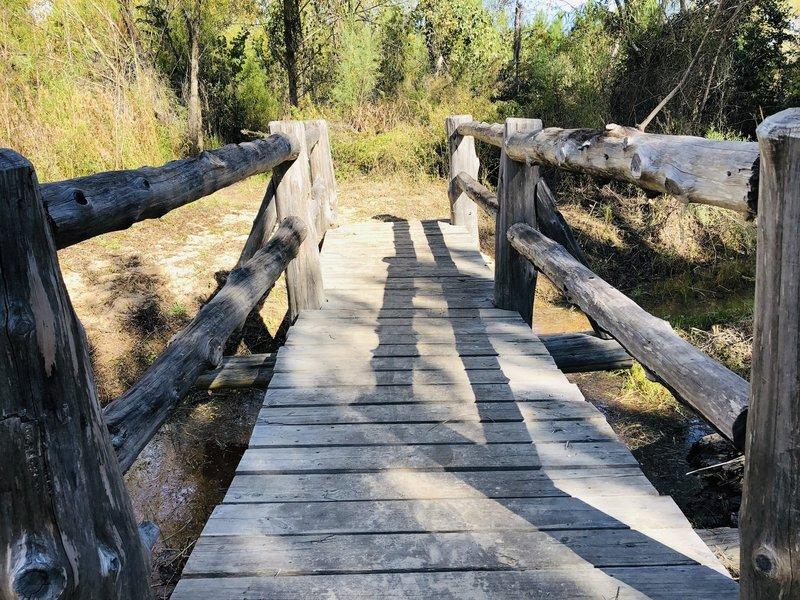 Bridge on the  Scenic Overlook Trail