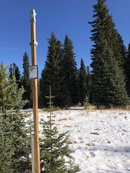 Nordic Ski Trail Marker F looking north