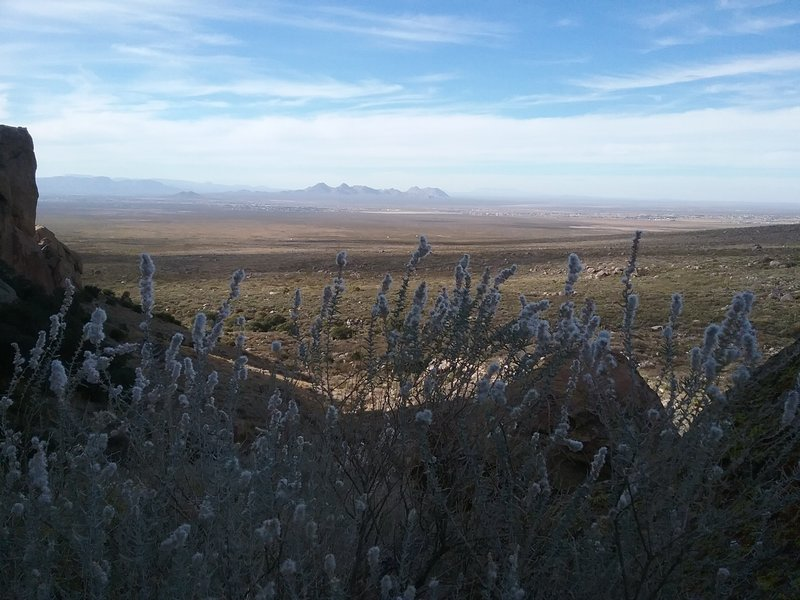 View of the Dona Ana Mountains