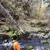 Crossing Buck Creek on the lower Buck Mountain Trail. Spring run-off will make crossing difficult.