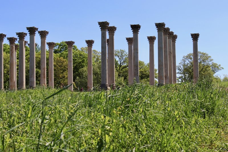 Over the small hill of Capitol Columns