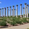 Path to historic Capitol Columns