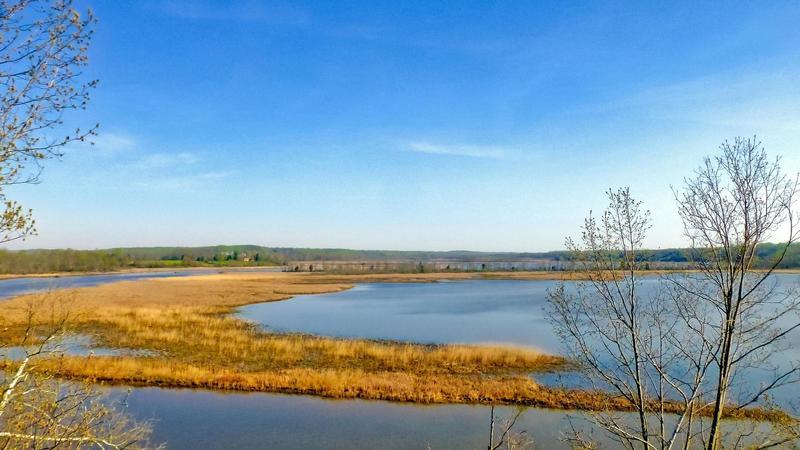 Patuxent River Park Apr 11, 2017, 8-16 AM_edit