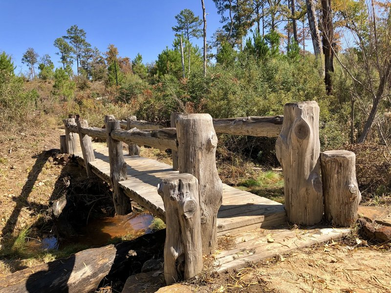 Bridge on Pine Warbler Trail ( Black Trail  )