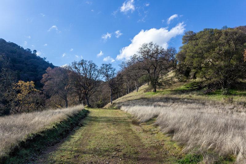 Deer Jaw Trail