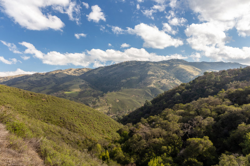 Looking towards Mendenhall Springs from Sailor Camp Trail.