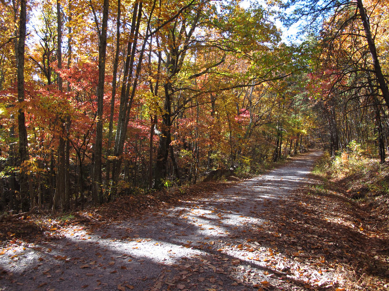 Tower Trail beginning
