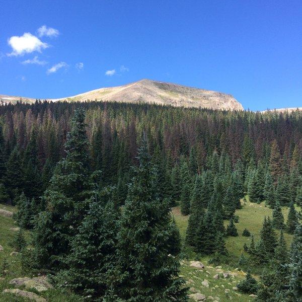 Views near trailhead