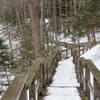 Frozen Beach-8