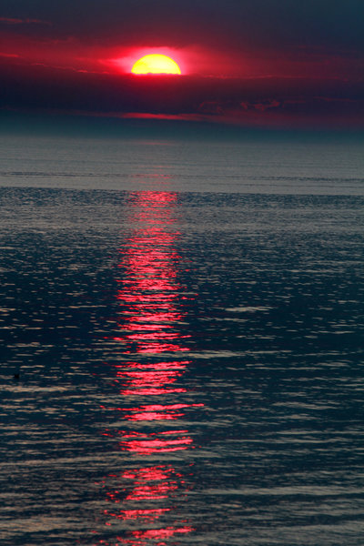 Hoffmaster Evening Light