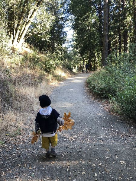 The trail is easy to walk, not always that wide but fairly flat. Fall is a nice time of the year for kids.