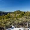 The top of the Fiddle Creek Ridge