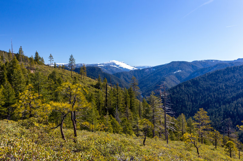 Snowy mountains at the heart of Tahoe National Forest.