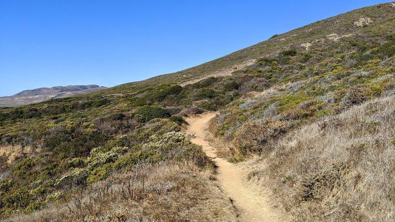 Dusty Bluffs Trail