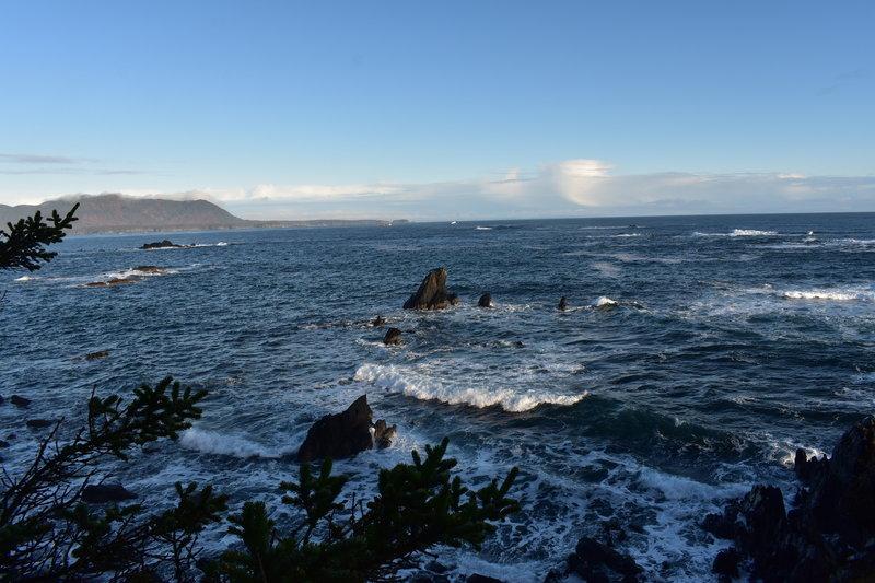 Marmot Bay