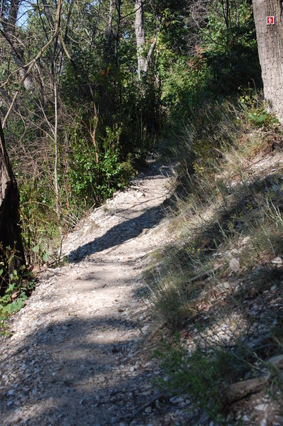 Morrow Mountain Loop Trail