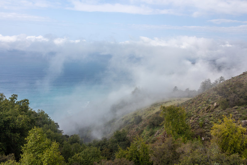 Low hanging clouds on Kirk Creek Trail
