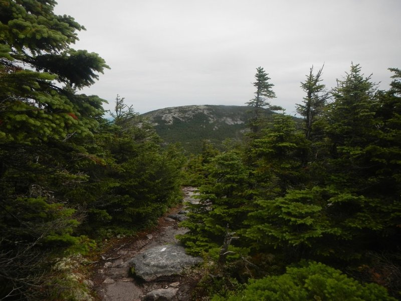 Grafton Notch to East B Hill Road