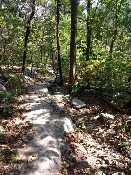 Follow the ashen rock road!