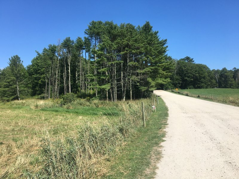 Farm Loop Trail