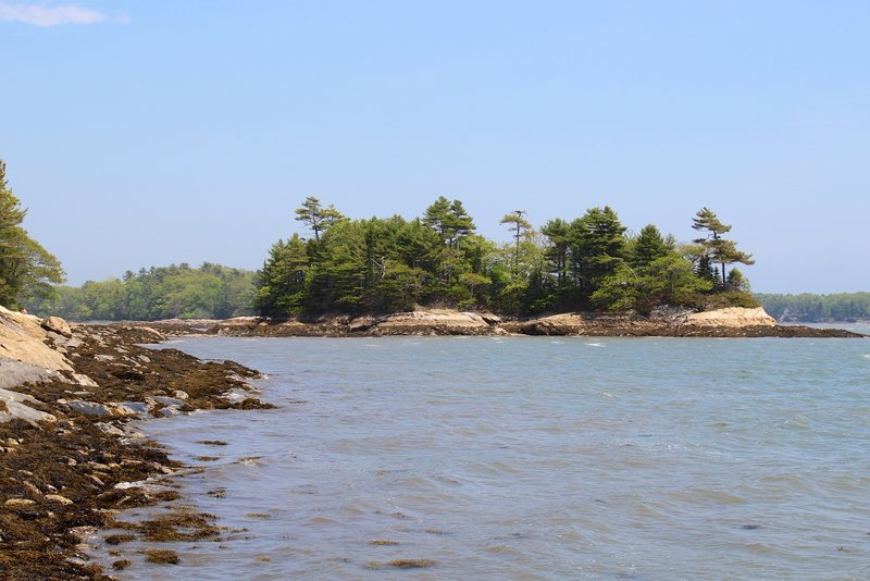 Googins Island