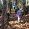 Wolfe's Neck Woods