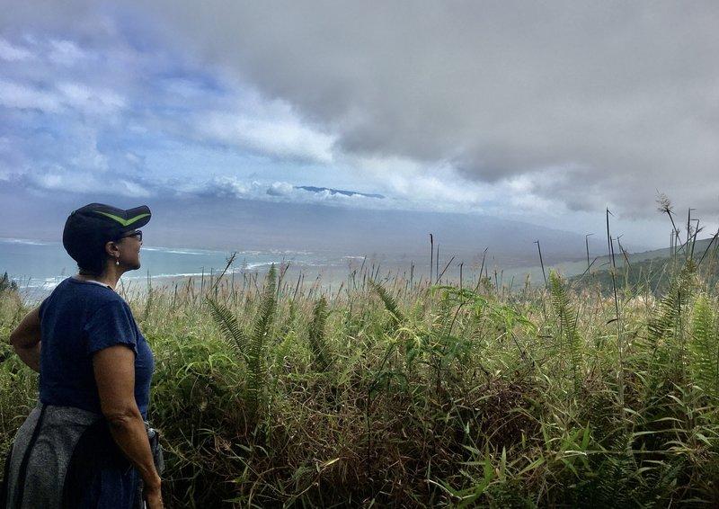 Southwest view toward Haleakala and North shore.