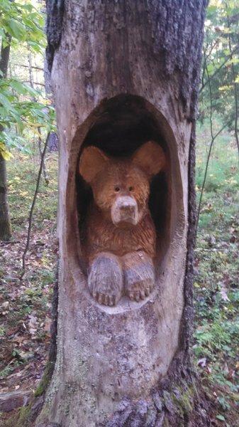 Nice carving on Bear Brook