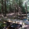 Bridge on Cascade Trail over Catamount Brook