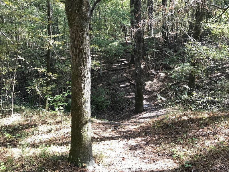 Probably biggest challenge for less mobile or adventure for others, down and up a ravine with stairs cut into the hill side that was a dry crossing as water seemed to fall into a hole, otherwise for the most part, trail is very little climbing.