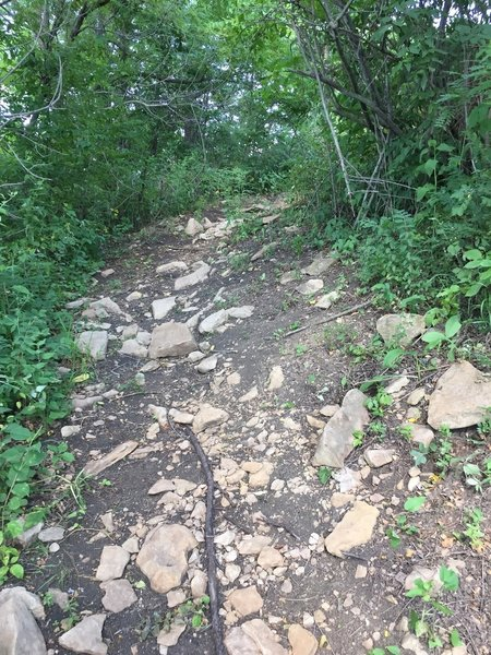 This is a steep climb with rocky footing.
